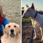 Leny And Sparky – Who Is The Best Instagram Dog?