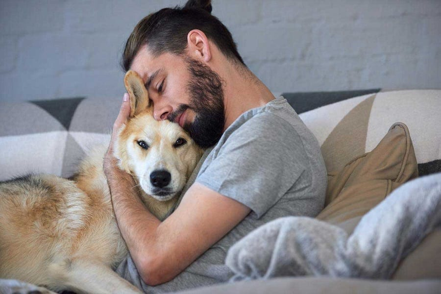 5 Heartwarming Dog Stories Around The World