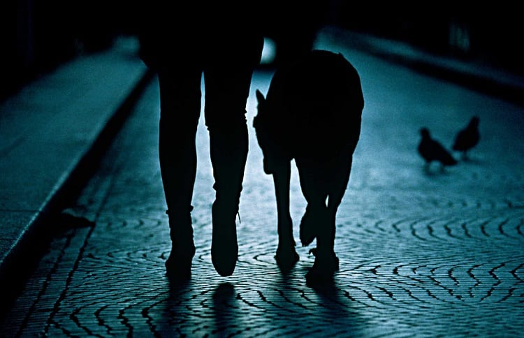 A person walking their dog at night.