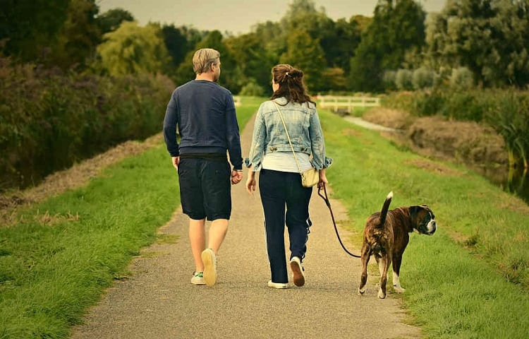 young couple walks with dog